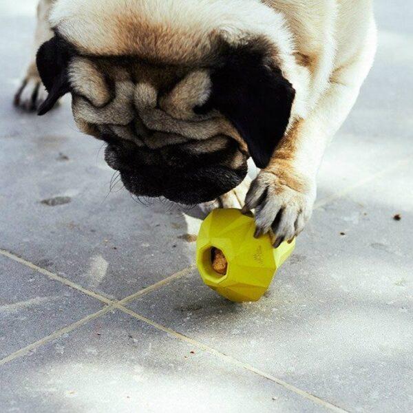 zeedog dog legetøj til godbidder