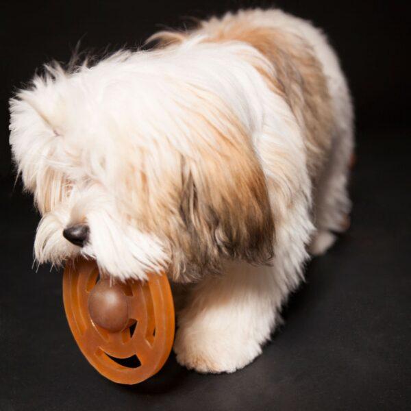Galaxy frisbee naturgummi hundelegetøj